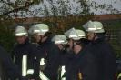 Inspektion Leistungsabzeichen THL 2010