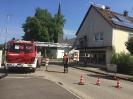 Drehleiterrettung in Thannhausen am 15.08.16