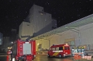 Person in Silo in Thannhausen am 15.11.16