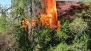 Brand Gartenhütte in Thannhausen am 25.04.19