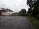 Unwettereinsätze in Thannhausen und Ziemetshausen am 29.06.21_2